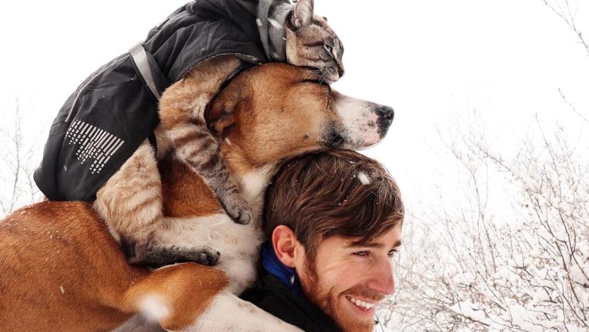 Henry & Baloo: Εσύ ακόμα να ακολουθήσεις την πιο γλυκιά σελίδα του Instagram;