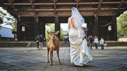 Η νύφη – πέτρα και το δέσιμο στο δέντρο: Τα πιο creepy έθιμα γάμου σε ολόκληρο τον κόσμο