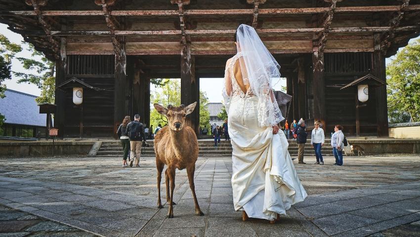 Αλλεργικοί στον γάμο: 3 ανδρικά ζώδια που είναι γεννημένοι εργένηδες