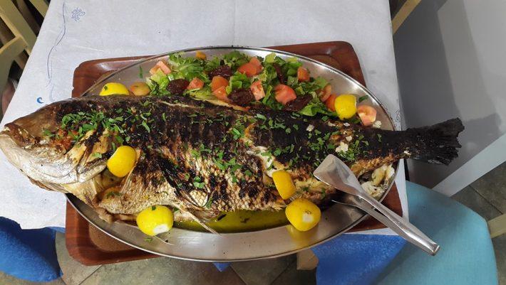 Mεσογειακή δίαιτα: Το εβδομαδιαίο μενού διατροφής που πρότεινε ο Σωτήρης Τσιόδρας