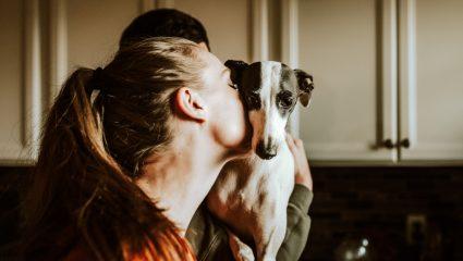 Χωρισμός και κατοικίδιο! Tρία πράγματα που πρέπει να ξεκαθαρίσεις από την αρχή της σχέσης