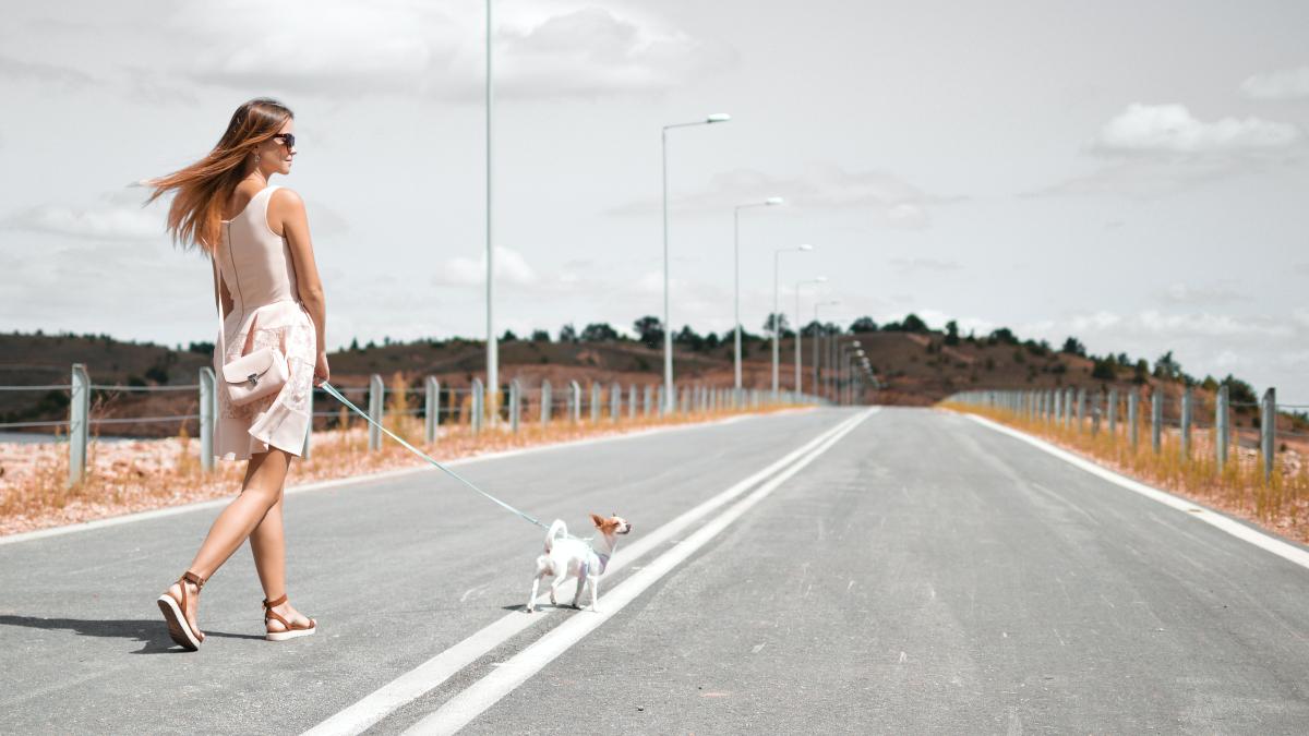 Βόλτα με τον σκύλο σου: Μην ξανακάνεις ποτέ αυτό το λάθος κατά τη διάρκειά της