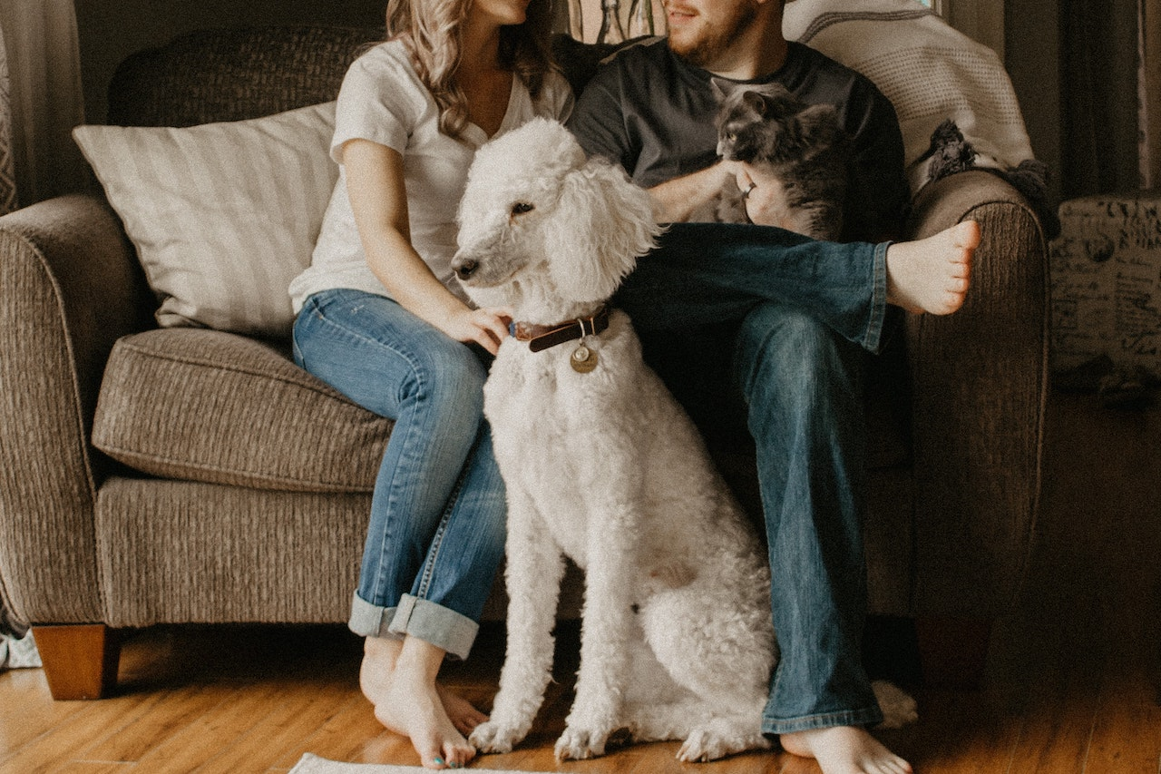 Apocalypsing: H νέα τάση στα ζευγάρια που ευδοκιμεί ιδιαίτερα στον καιρό της πανδημίας